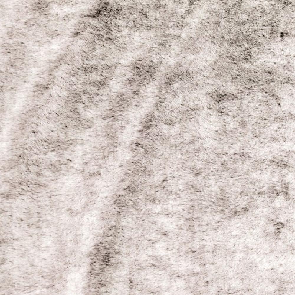 MISIA, MONTPARNOS<br>M124702