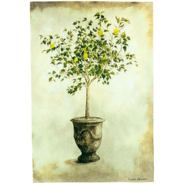Luka, T1996 Zitronenbaum  <br> Гобелен Цитрусовое дерево <br>размер 100х145