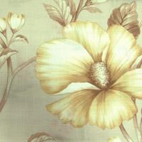 Anne цвет 2