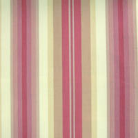 Anne Stripe col 1